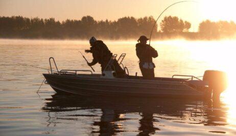Календар риболовлі на Листопад 2020 року.