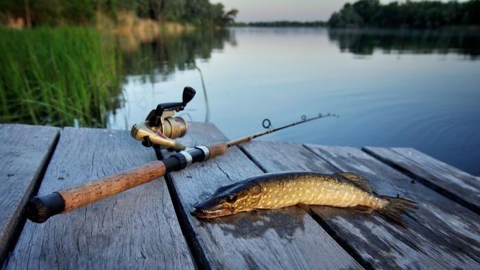 Місячний календар риболовлі на Серпень 2021 року.